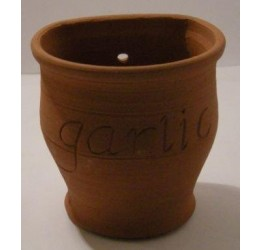 Garlic Storage Jar 11 dia 11cm H Wall Mounted  Terracotta Hand made Guaranteed quality